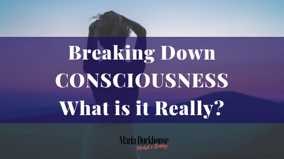 Breaking down Consciousness
